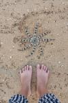 Kep-Starfish